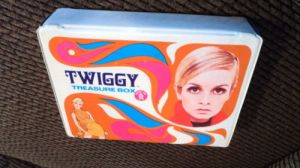 Twiggy case