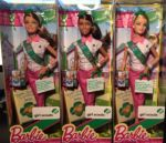 2014 Scouts, Barbie nikki and Teresa