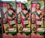 2014 Scouts, Barbie nikki and Teresa