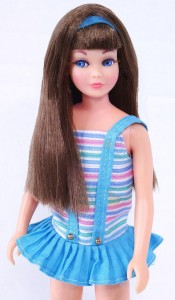 Brunette Twist N Turn TnT Skipper Doll Mint