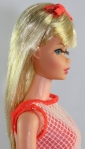 TNT~Barbie~blonde~Trade-In Box~closeup-side2