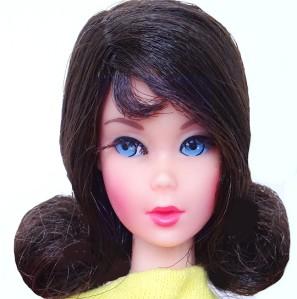 1969-dark-brunette-flip-twist-n-turn