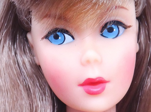 Brunette TWT Doll face