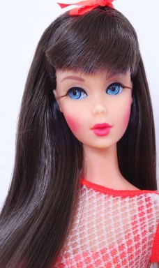 Dark Brunette Twist 'N Turn TNT Barbie Doll face