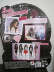 Fifth Harmony ALLY Barbie Doll a.JPG back
